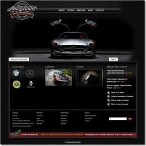 AutoDetailer: Website design